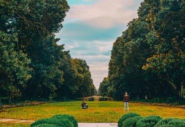 SH garden